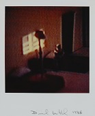 view Untitled from the series Modern Romance digital asset number 1
