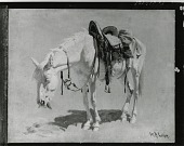 view Navaho (sic) Pony (Study No. 1) [painting] / (photographed by Peter A. Juley & Son) digital asset number 1