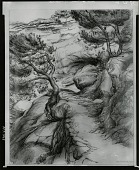 view Mallorca Landscape [drawing] / (photographed by Peter A. Juley & Son) digital asset number 1