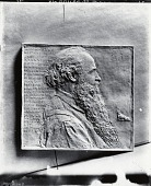 view Dr. Henry Shiff [sculpture] / (photographed by De Witt Ward) digital asset number 1