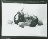 view Eggplant and Tomatoes [painting] / (photographed by Peter A. Juley & Son) digital asset number 1