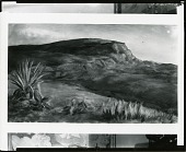 view The Butte [art work] / (photographed by Peter A. Juley & Son) digital asset number 1