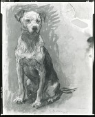 view Dog [drawing] / (photographed by Peter A. Juley & Son) digital asset number 1