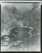 view Hemlock Pool [painting] / (photographed by Peter A. Juley & Son) digital asset number 1