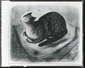 view No Title Given: Cat on a Pillow [drawing] / (photographed by Peter A. Juley & Son) digital asset number 1