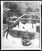 view Winter Sport [drawing] / (photographed by Peter A. Juley & Son) digital asset number 1
