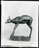 view Fawn Scratching [sculpture] / (photographed by Peter A. Juley & Son) digital asset number 1