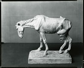view Old Horse [sculpture] / (photographed by Peter A. Juley & Son) digital asset number 1