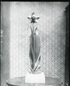 view Swamp Lily [sculpture] / (photographed by Peter A. Juley & Son) digital asset number 1