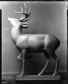 view Deer [sculpture] / (photographed by Peter A. Juley & Son) digital asset number 1