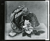 view The Rose [painting] / (photographed by Peter A. Juley & Son) digital asset number 1