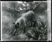 view Cat and Snake [painting] / (photographed by Peter A. Juley & Son) digital asset number 1