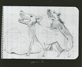 view Preliminary Drawing for Animales (Animals) [drawing] / (photographed by Peter A. Juley & Son) digital asset number 1