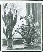 view The Frosted Window [painting] / (photographed by Peter A. Juley & Son) digital asset number 1