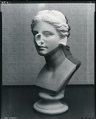 view Otorhinological Head of Venus [sculpture] / (photographed by Peter A. Juley & Son) digital asset number 1