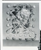 view Galatea of the Spheres [painting] / (photographed by Peter A. Juley & Son) digital asset number 1
