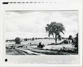 view Grain Fields at Allegan, Michigan Farm [painting] / (photographed by Peter A. Juley & Son) digital asset number 1