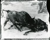 view Fighting Bull, Madrid [painting] / (photographed by Peter A. Juley & Son) digital asset number 1