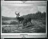 view Buck & Doe: October [painting] / (photographed by Peter A. Juley & Son) digital asset number 1