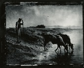 view Peasant Watering His Cows on the Bank of the Allier River, Dusk [drawing] / (photographed by Peter A. Juley & Son) digital asset number 1