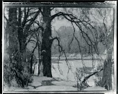 view Along the Stream [painting] / (photographed by Peter A. Juley & Son) digital asset number 1