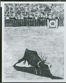 view Bullfight II [collage] / (photographed by Peter A. Juley & Son) digital asset number 1