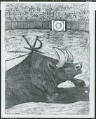 view Bullfight III [collage] / (photographed by Peter A. Juley & Son) digital asset number 1