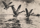 view Geese Rising, [photomechanical print] digital asset number 1