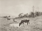 view Cows at Pasture, [photomechanical print] digital asset number 1