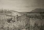 view Black Duck Hunting, [photomechanical print] digital asset number 1