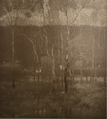 view Gray Days, March, [photomechanical print] digital asset number 1