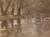 view Old Water Wheel, Conesus Creek, Livingston Co., N.Y. [photomechanical print] digital asset number 1