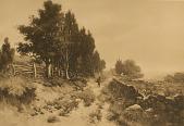 view Rural New England [photomechanical print] digital asset number 1