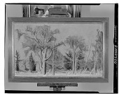 view Elms and Evergreens [painting] / (photographed by Walter Rosenblum) digital asset number 1
