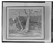 view No Title Given: Landscape with Trees, [art work] / (photographed by Walter Rosenblum) digital asset number 1