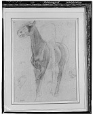 view Horse and Rider [drawing] / (photographed by Walter Rosenblum) digital asset number 1