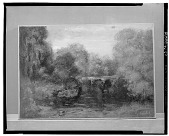view Interior Forest Scene [art work] / (photographed by Walter Rosenblum) digital asset number 1