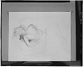 view Sleeping Woman [drawing] / (photographed by Walter Rosenblum) digital asset number 1