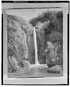 view Forest Interior with Waterfall [art work] / (photographed by Walter Rosenblum) digital asset number 1