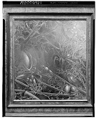 view Creatures of the Swamp [painting] / (photographed by Walter Rosenblum) digital asset number 1