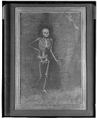 view The Skeleton [drawing] / (photographed by Walter Rosenblum) digital asset number 1