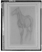view Horse Walking [drawing] / (photographed by Walter Rosenblum) digital asset number 1