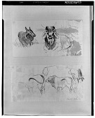 view Drawing from Sketch Book, Brahman Cattle [drawing] / (photographed by Walter Rosenblum) digital asset number 1