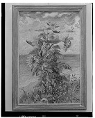 view Sunflowers, [painting] / (photographed by Walter Rosenblum) digital asset number 1