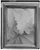 view Oak Leaves, Pink and Grey [painting] / (photographed by Walter Rosenblum) digital asset number 1