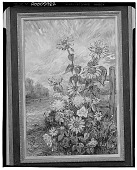 view Sunflowers by the Fence, [painting] / (photographed by Walter Rosenblum) digital asset number 1