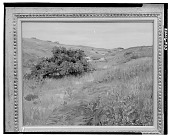 view Shinnecock Hills, [painting] / (photographed by Walter Rosenblum) digital asset number 1