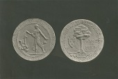 view The Flattery Medal (obverse and reverse) [sculpture] / (photographed by De Witt Ward) digital asset number 1