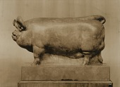 view Boar [sculpture] / (photographed by De Witt Ward) digital asset number 1