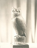 view Rainey Memorial Gates: detail of Owl [sculpture] / (photographed by De Witt Ward) digital asset number 1